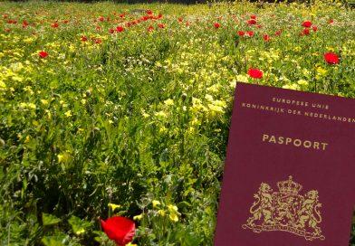 Paspoort perikelen