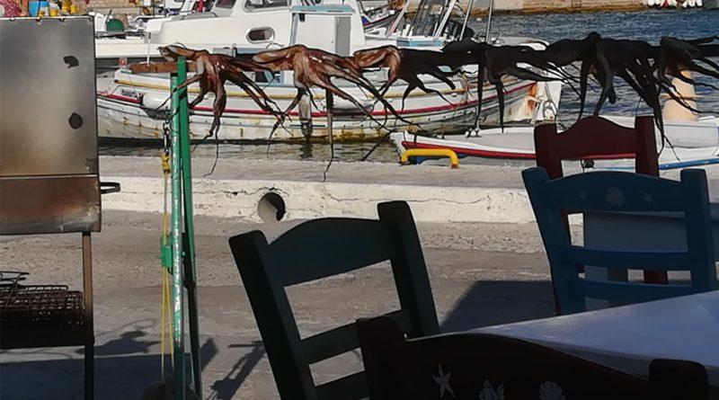 Octopussen hangen te drogen in de haven van het eiland Lipsi