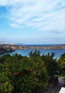 Sinaasappelbomen aan zee op Rhodos